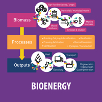 BIOENERGY-WITH-EMBEDED-TEXT