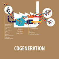 COGENERATION-WITH-EMBEDED-TEXT