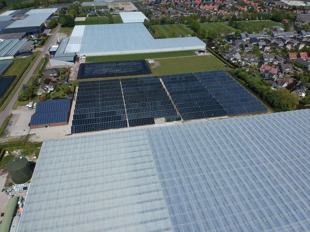 Solar heat at Tesselaar Freesia, the Netherlands